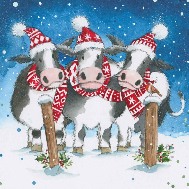 Three cows wearing hats and scarfs charity Christmas card