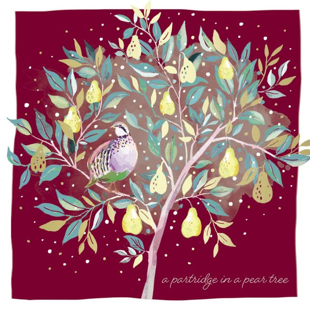 Partridge sat in a pear tree charity Christmas card